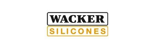 doi tac waker silicons - Trang chủ