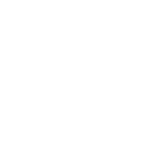 premium badge 300x300 - Trang chủ